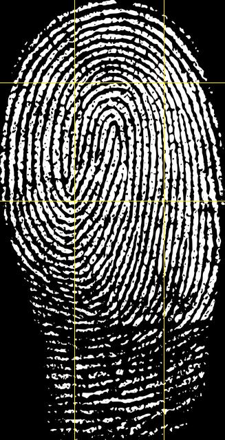 er_pilt_fingerprint.thumb.jpg.53d8ec0d30
