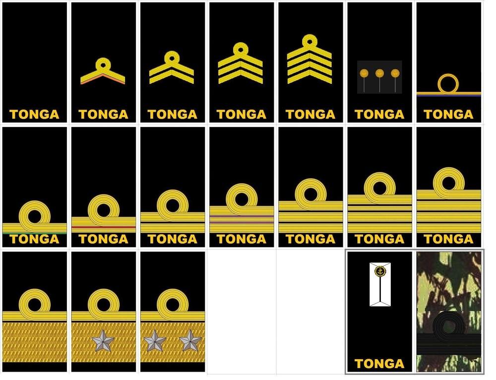 Alter_Tonga.thumb.jpg.f60f6d064f91a9672c