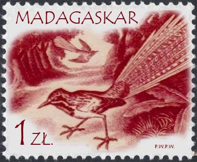 1961 1 00.jpg