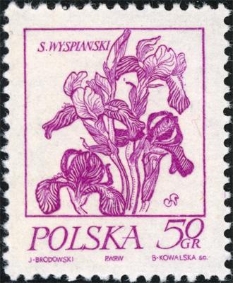 1974 0 50.jpg