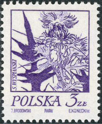 1974 3 00.jpg