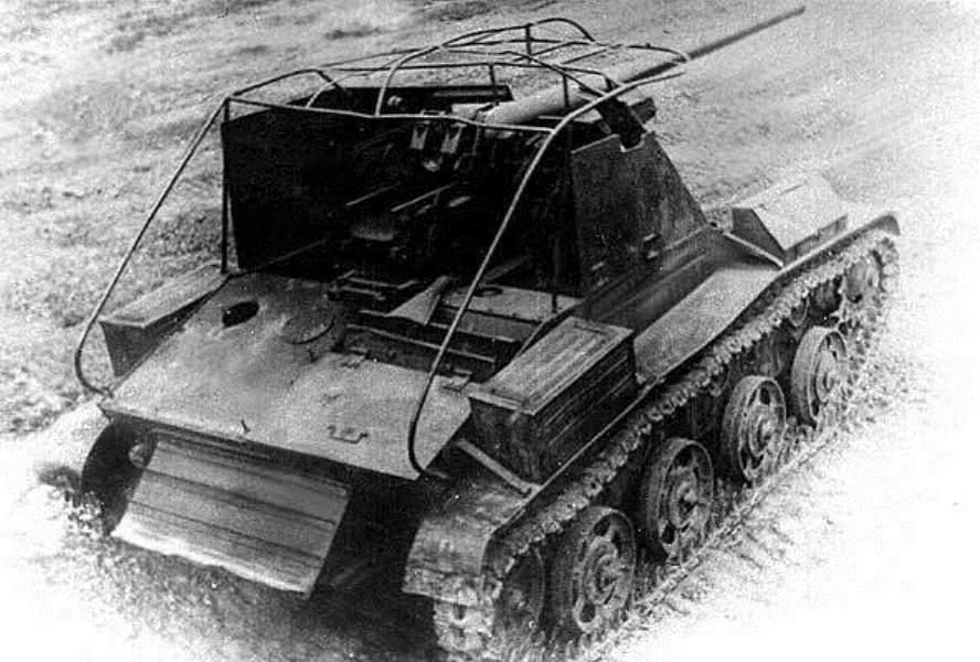sau-po-transilvanski-01.thumb.jpg.1b2e01